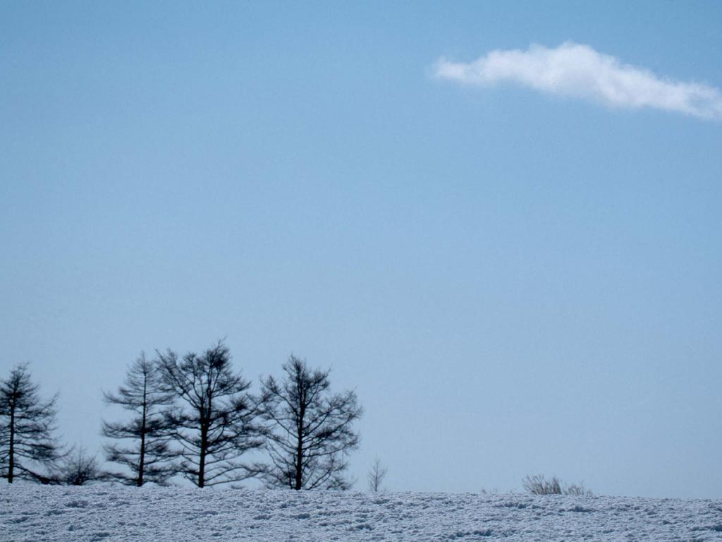 NICHELLEスタッフ・イクティのBeauty Diary Vol.1【冬になるとデリケートゾーンのトラブルも増える!?】